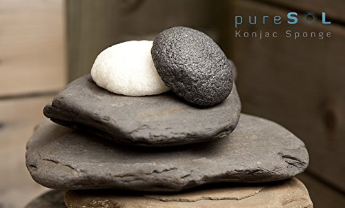 pureSol.sponge