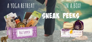 yogi.surprise.sneak.peaks.logo